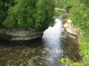 pic stream elora_gorge