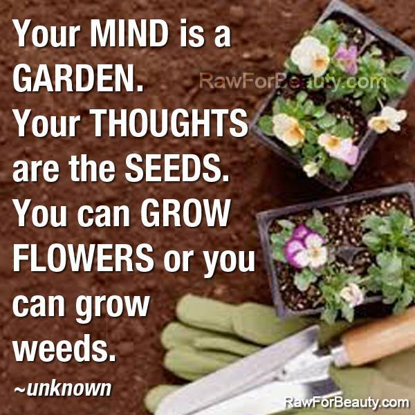 Internal Conflict Quotes >> Your Mind Is A Garden: Tend It Well - Integrated Holistic Counseling